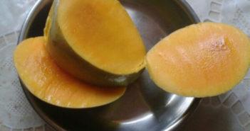 mankurad amo mango goan